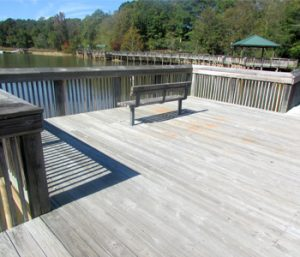 Abernathy Park boardwalk slated for improvements | Test