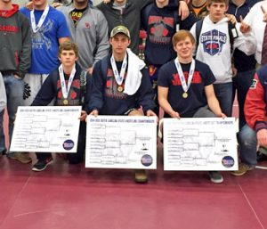 Warriors' McIntyre, Sheehy, Smith win State titles | Test