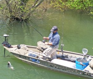 Outdoors: Look for spawning stripers to move upriver | Test