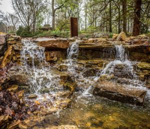 S.C. Botanical Garden ranked among nation's best | Test