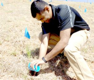 BorgWarner employees plant memorial trees | Test