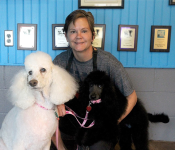 Taking care of the Upstate's four-legged friends | Test