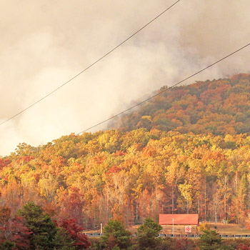 Burnout brings Table Rock wildfire closer to containment | Test