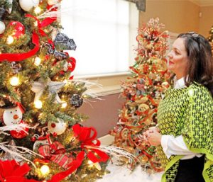 Christmas Tree Festival kicks off | Test