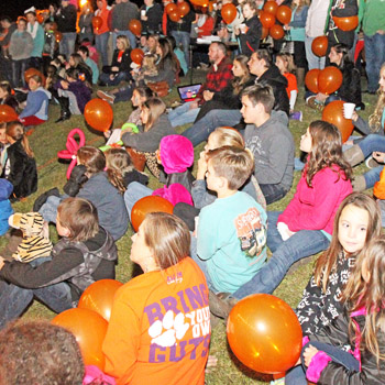 Lachlan's Light the Night event planned Sunday in Seneca | Test