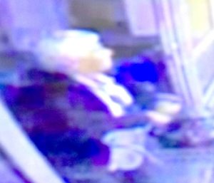 Police hoping to identify woman in connection with vandalism incident