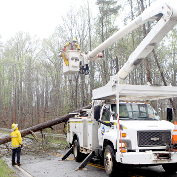Heavy winds, rain down trees, knock out power | Test
