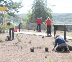 Earth Day in May festival planned at World of Energy   Test