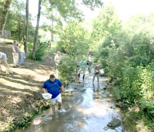 Clemson, DHEC partner to protect streams | Test