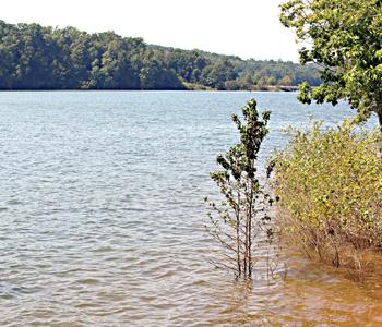 Officials still working on water taste, odor | Test