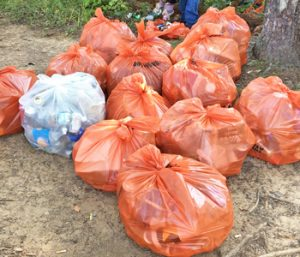 Fall Creek litter pickup a success | Test