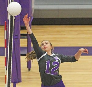 Crescent takes advantage of Walhalla errors, wins in four sets | Test