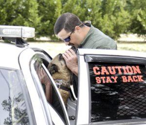 Missing sheriff's office K-9 returns home | Test