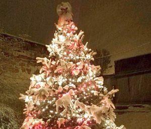 Westminster kicks off '12 Days to Christmas' | Test