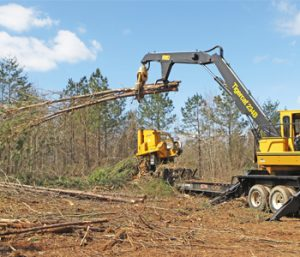 Trees coming down at Seneca Rail site | Test