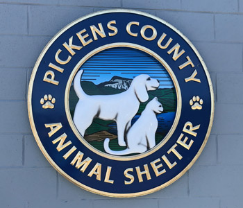 Pickens County Animal Shelter's new outdoor park is for people and potential pets to connect | Test