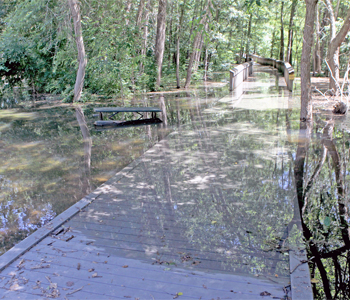 Abernathy Park closed due to high lake levels | Test