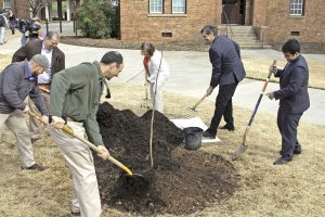 Descendant of Newton's apple tree planted at CU | Test
