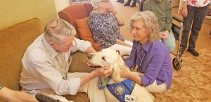 Church members train to use comfort dog for ministry | Test