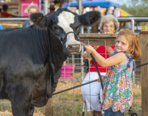Fair offers farm fun for the family | Test
