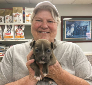 Thanksgiving on four paws — Nonprofit to provide holiday meal for Pickens animal shelter | Test