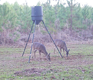 Outdoors: Getting unstuck from a deer stand | Test