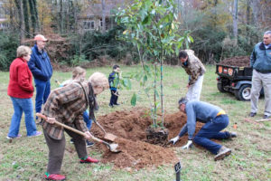 Clemson to host Arbor Day events today | Test